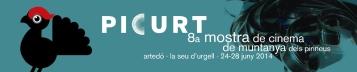 Banner Picurt 2014